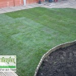 landscaping-lawns-dublin-1