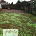 landscaping-lawns-dublin-10