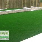 landscaping-lawns-dublin-17