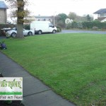 landscaping-lawns-dublin-24