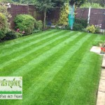 landscaping-lawns-dublin-26