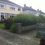 landscaping-services-dublin-27