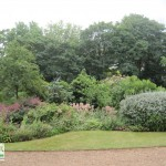 landscaping-services-dublin-4